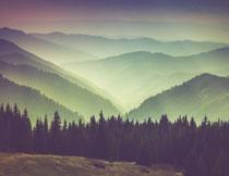 远眺视角群山树木风光高清图片