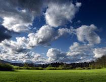 天空白云树林草地摄影高清图片