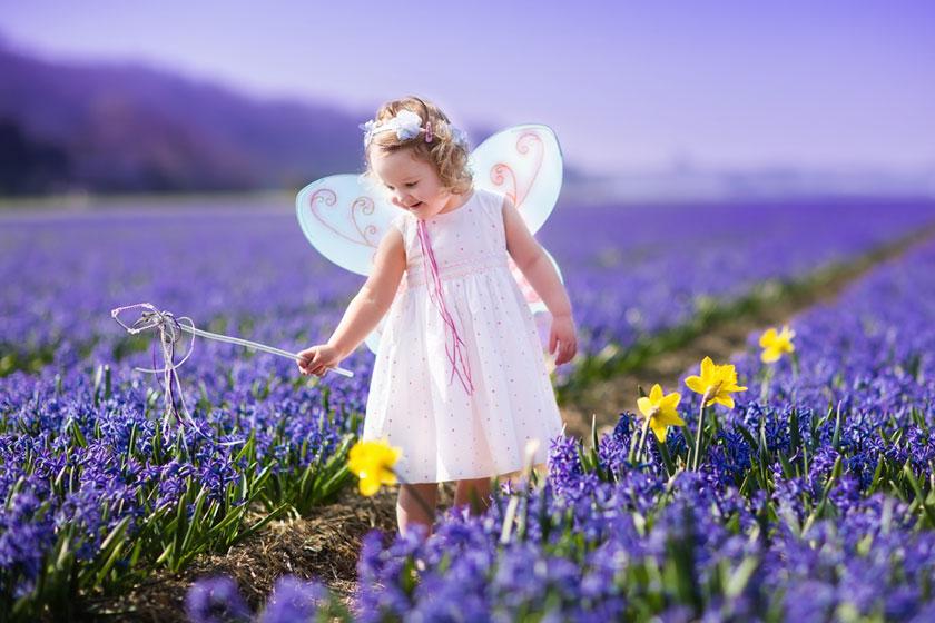 薰衣草植物园里的女孩高清图片