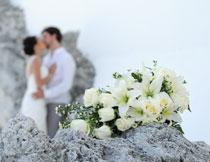 白色的百合玫瑰花特写高清图片