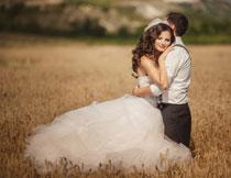 站在麦地里的新娘新郎高清图片