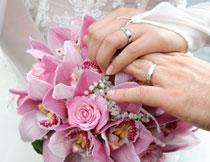 放在鲜花上的双手摄影高清图片