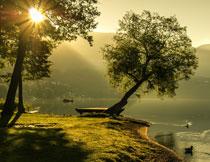 湖畔树木山峦风光摄影高清图片