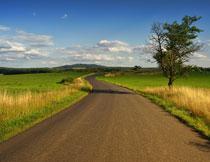 蓝天白云公路草地摄影高清图片