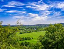 天空白云远山树木树叶高清图片