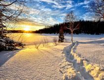大雪后的蓝天白云摄影高清图片