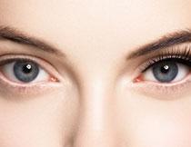明亮双眸美女特写摄影高清图片