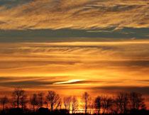 黄昏云彩树木自然风光高清图片