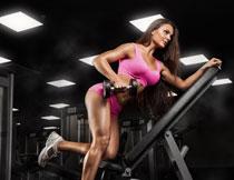 力量训练粉色美女摄影高清图片