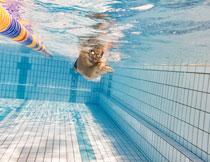 在游泳池中的男子摄影高清图片