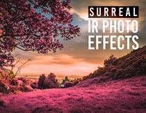 风景转紫色和红色艺术效果PS动作
